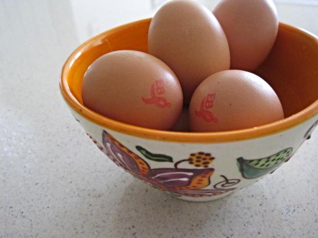 eggs 1